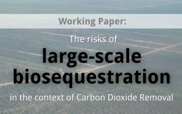 New report highlights risks of large-scale biosequestration as a form of CO2 removal
