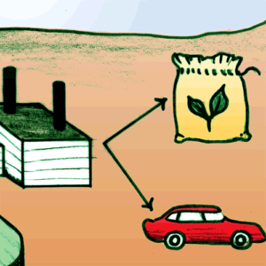 Carbon Capture Use and Storage