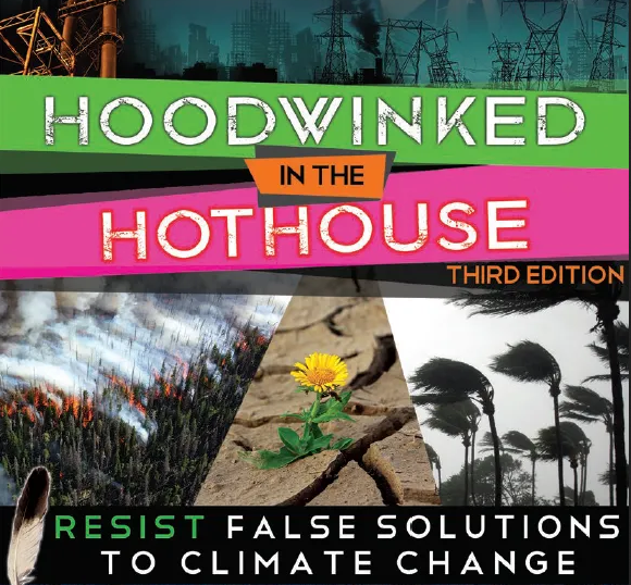 Cover of report titled Hoodwinked in the Hothouse